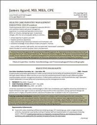 Resume Portfolio Examples by Executive Biography Example Business Development Executive