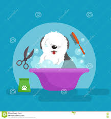 dog hair hygiene vector illustration set pet grooming and care
