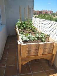 balkon hochbeet hochbeet balkon selber bauen bepflanzen anbauen gemuese holz