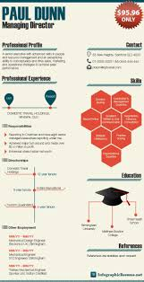 Infographic Resume Samples by Curriculum Vitae Infographic Template Infographic Resume