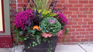 fall planting the home depot community