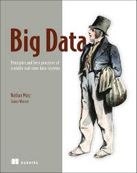 big data principles and best practices of scalable realtime data