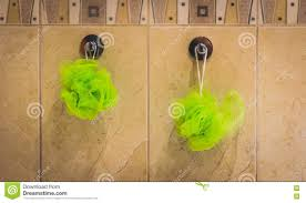 Pictures For The Bathroom Wall Two Green Bath Sponges Hanging From The Bathroom Wall Stock Photo