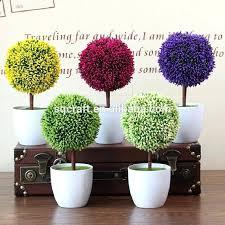 office bonsai tree u2013 neodaq info