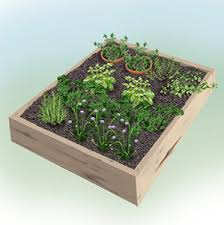 herbal garden herb gardening bonnie plants