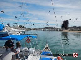 Puerto Penasco Map World Class Whale Watching In Puerto Peñasco U2013 Rocky Point 360
