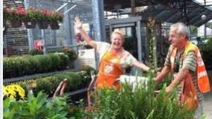 home depot black friday en baltimore home depot greenhouse grower