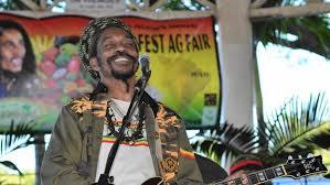 nesta fest to bring reggae vibes to wilmington news wilmington