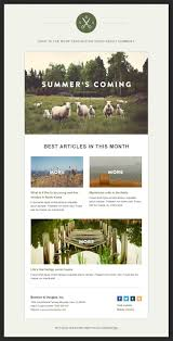 142 best template 3 images on pinterest email template design