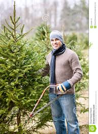 man cutting christmas tree stock photo image of people 30069170