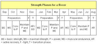 the sport specific approach to strength training programs sport