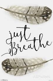 just breathe feathers quote print poster 22x34 ebay