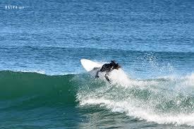 ralph thanksgiving surf 11 23 2017 web 4 jpg
