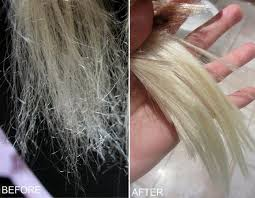 sollutions to dry limp hair this diy miracle hair repair will save dry broken and damaged