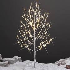 tree with white lights origin of day in the world