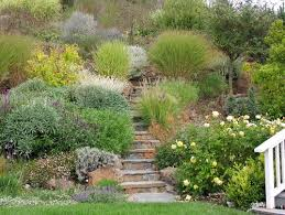 Landscape Ideas For Sloping Backyard How To Work With A Sloping Yard