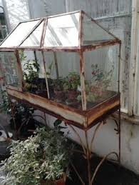 wooden greenhouse terrarium wooden greenhouses and terraria