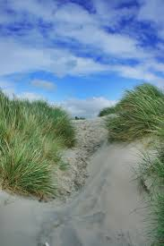 32 best witterings images on pinterest seaside chichester and