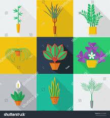 illustration houseplants indoor office plants pot stock vector
