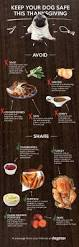 chinese thanksgiving recipes a cheat sheet for scoring high on thanksgiving 101 3 the jockey