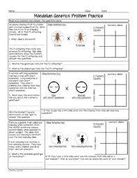 punnett square practice problems biology homework worksheet  tpt with punnett square practice problems biology homework worksheet from teacherspayteacherscom