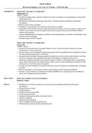 physical therapist resume pediatric physical therapist resume sles velvet