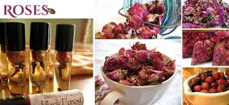 dried roses dried faq how to store and use fresh dried roses lizzy