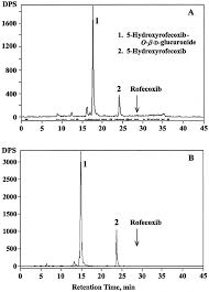 the absorption distribution metabolism and excretion of