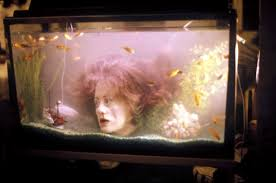 top scariest themed aquariums