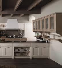 kitchen cabinet modern kitchen design kitchen cabinets pictures