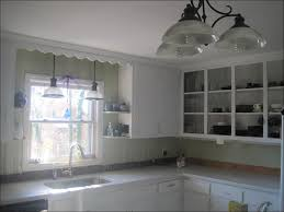 kitchen cabinet andrew jackson andrew jacksons firsts kitchen cabinet jackson kitchen cabinets