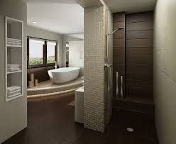 a beautiful walk in shower design for your perfect house