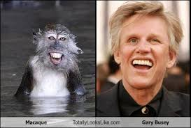 Gary Busey Meme - image 117149 totally looks like separated at birth know