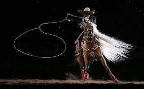 145 archer hd wallpapers backgrounds v 565 rodeo wallpapers hd images of rodeo ultra hd 4k rodeo