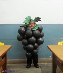 Halloween Grape Costume Homemade Grapes Costume