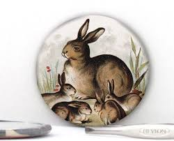 Easter Decorations Rabbits the 261 best images about easter decor on pinterest