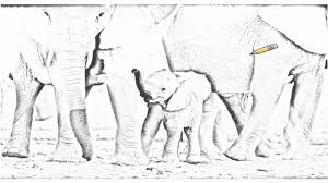 auto draw 2 african elephant calf with herd etosha national park