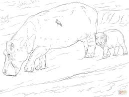 mother and young hippo coloring page free printable coloring pages