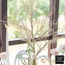 Tree Centerpiece Wedding by 99 Best Wedding Table Centerpieces Images On Pinterest Wedding
