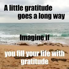 Gratitude Meme - meme monday gratitude 1 up with marc