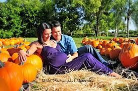 pumpkin patch maternity pumpkin patch maternity shoot the bump