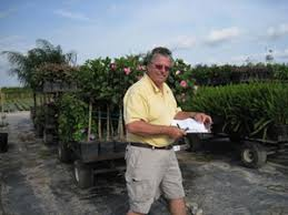 grays ornamentals growers of ornamental tropical plants
