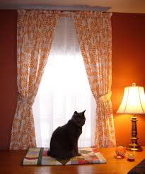 Curtain Color For Orange Walls Inspiration Curtains Inspiration Orange Curtains For Snazzy Window Treatment