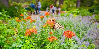 Arboretum by Arboretum At Flagstaff American Public Gardens Association