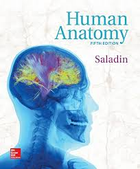 Human Anatomy And Physiology 8th Edition Anatomy U0026 Physiology The Unity Of Form And Function 8th Edition