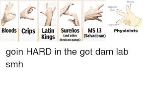 Magnets Bitch Meme - motion magnetic field current bloods crips latin surenos ms 13