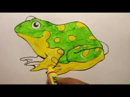 colour frog colouring pages tutorials kids