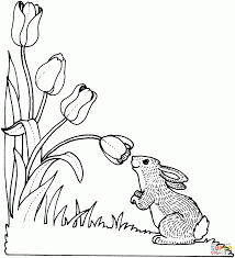 coloring pages lovely tulips coloring pages rabbit smelling