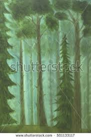 Deep Forest Green Deep Forest Wallpaper Stock Photos Royalty Free Images U0026 Vectors
