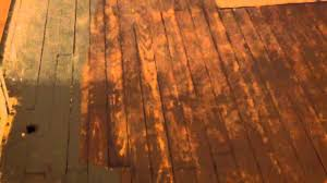 Restoring Hardwood Floors Without Sanding How To Refinish Wood Floors Without Sanding Part 3 Youtube